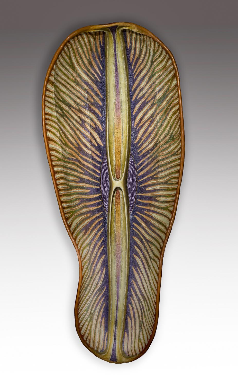 Diatom 4, 24.5 x 11.5 x 4.5 inches