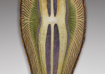 Diatom 5