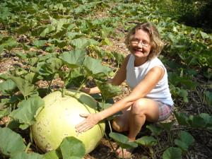 giant bushel gourd